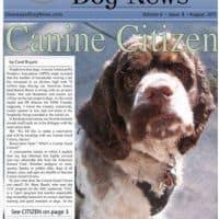 Canine Good Citizen testing