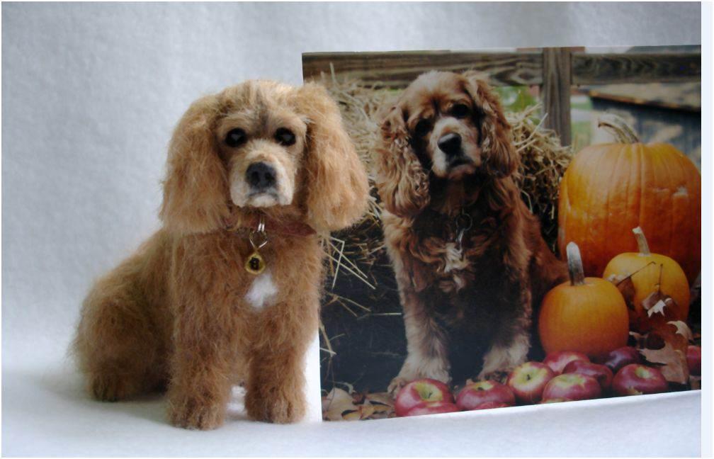 Miniature dog Lucy Maloney