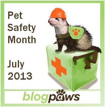 pet_safety
