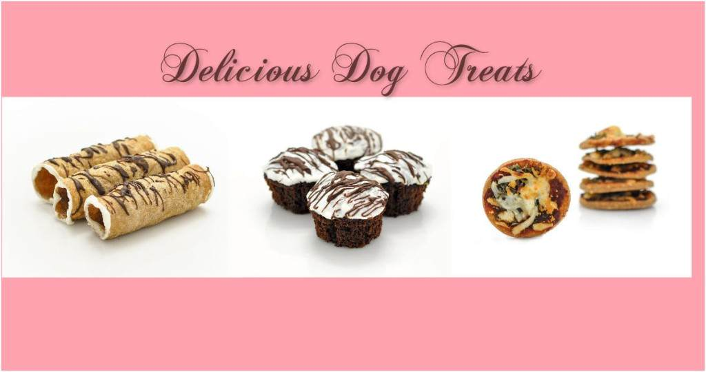 sweet_paws_Bakery
