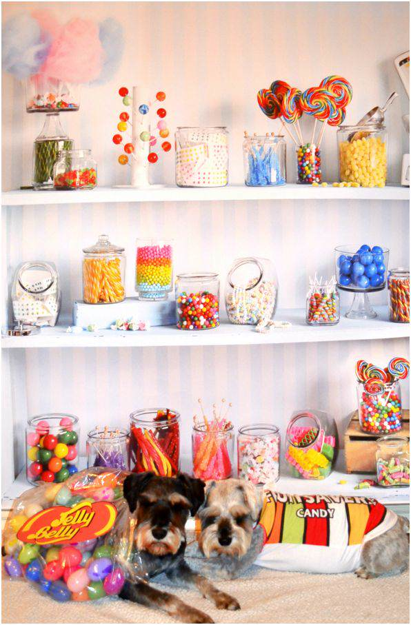 candy_dogs