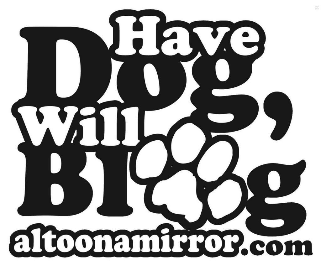 have dog blog