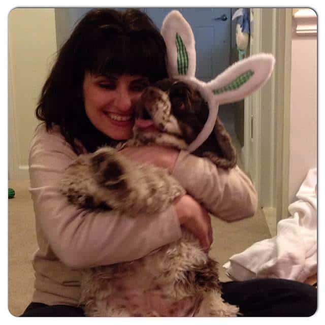 dog_bunny