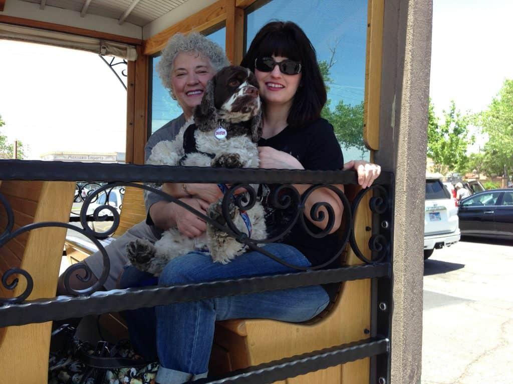pet friendly trolley