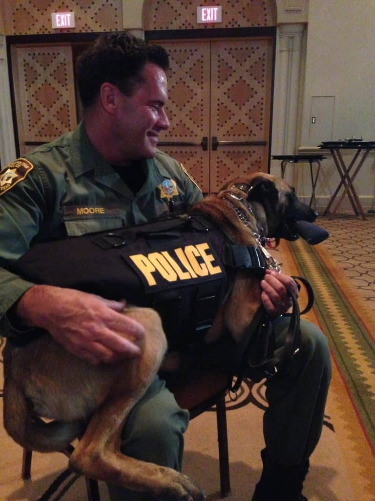 How to Help Dogs in the Line of Fire