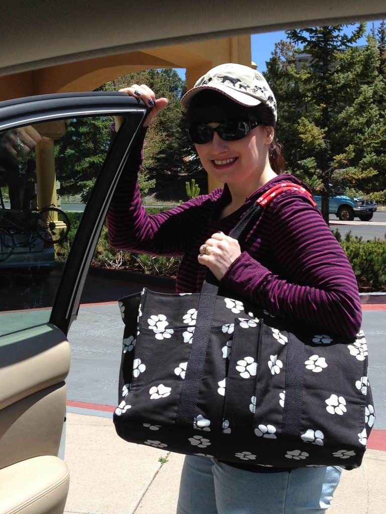 The One Dog Travel Tote You Must Have