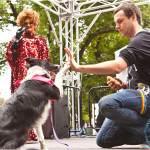 Down Under Diaries: Australian Pets Versus American Pets