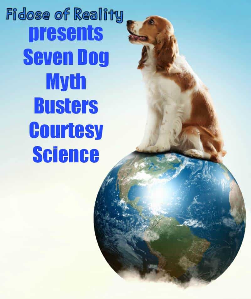 Seven Dog Myth Busters Courtesy Science