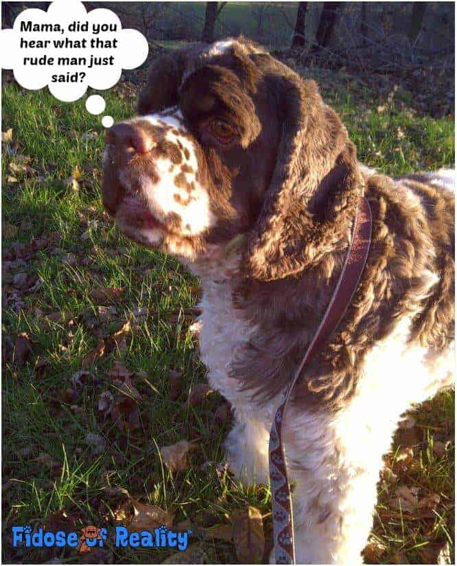 How Dog Parents Thwart Rude People