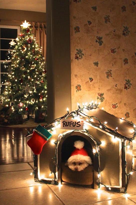 santa doghouse