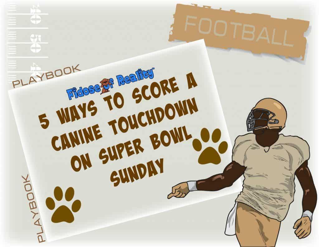 dog superbowl