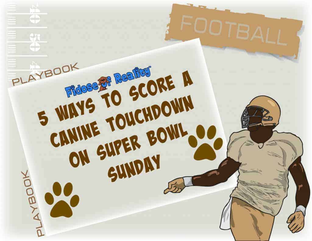 Five Ways to Score a Canine Touchdown on Super Bowl Sunday