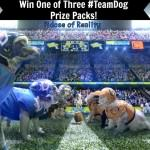 Win a #TeamDog Spirit Pack for Super Bowl