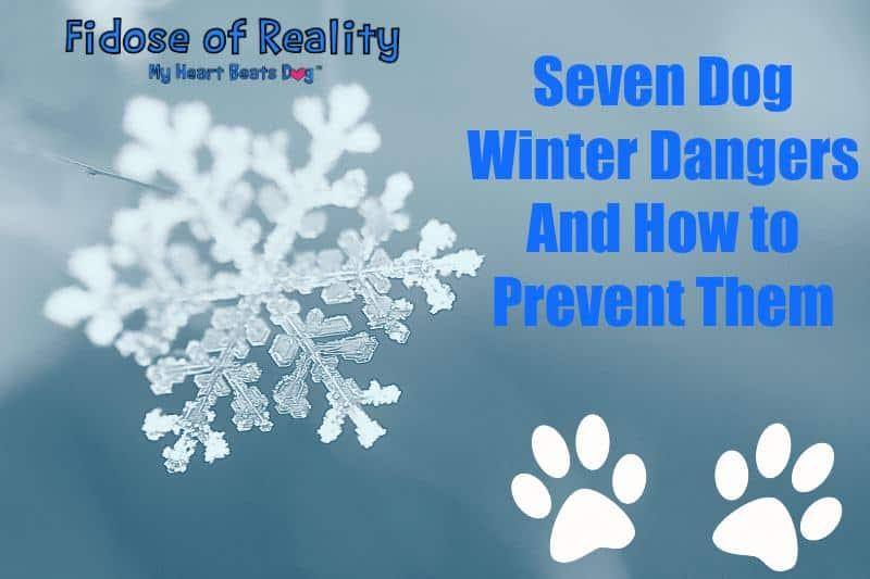 winter dangers