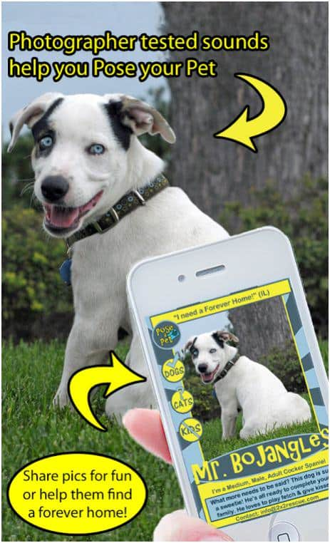 New Pose a Pet App Saves Lives and Gives Money Away