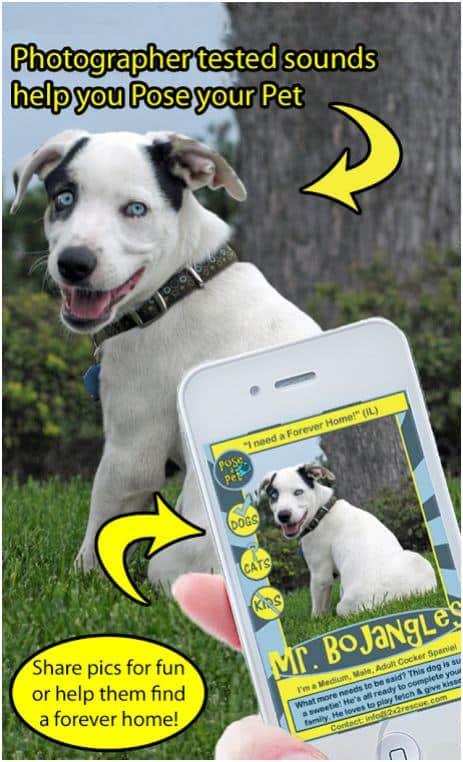 pose a pet app