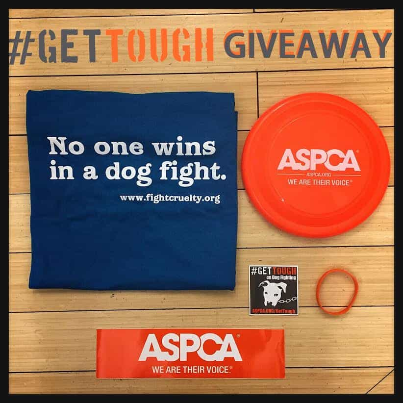 dog fighting pack