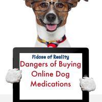 dangers of online pet medications #doghealth