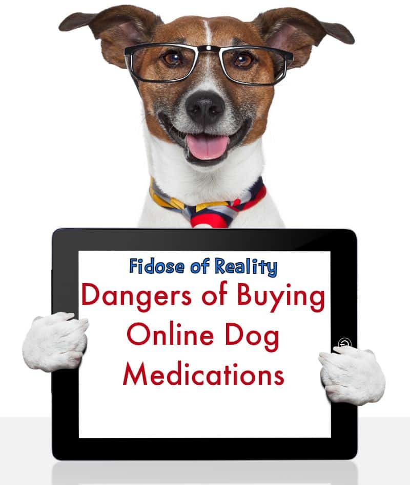 dangers of online pet medications #doghealth