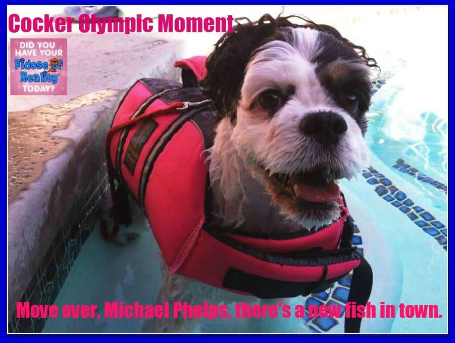 poppy swimmer