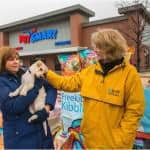Feel Good News Thanks to Halo Pets and PetSmart Canada