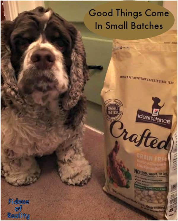 small batch dog food