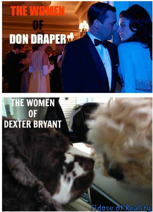 don draper women