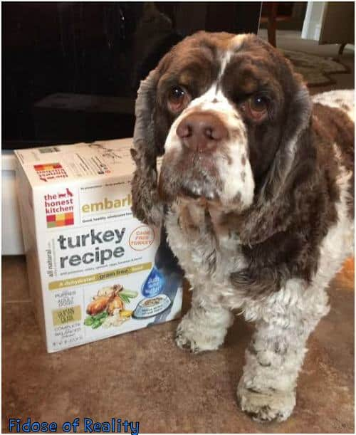The Dog Food The Honest Kitchen Web Site