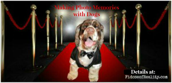 Making Photographic Keepsake Memories with Dogs #InspiredbyCrafted