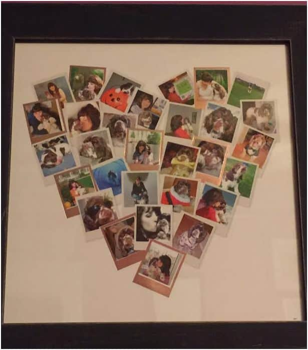 dog crafted project with photos