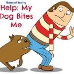 Help: My Dog Bites Me