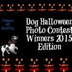 dog photo contest Halloween
