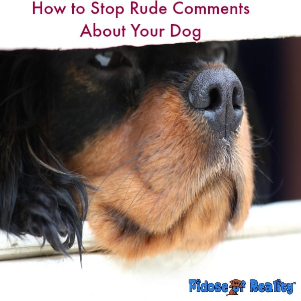 How to Stop Rude Comments About Your Dog
