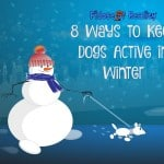 8 Ways to Keep Dogs Active in Winter #PinnacleHealthyPets