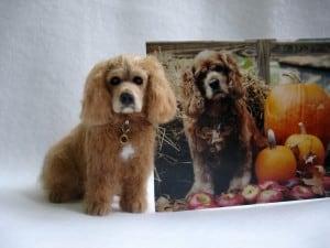 Designer Dog Miniature