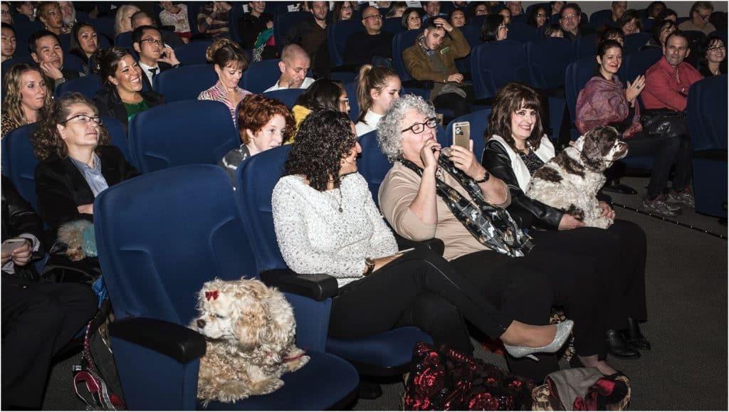 The Dog Wedding Movie audience