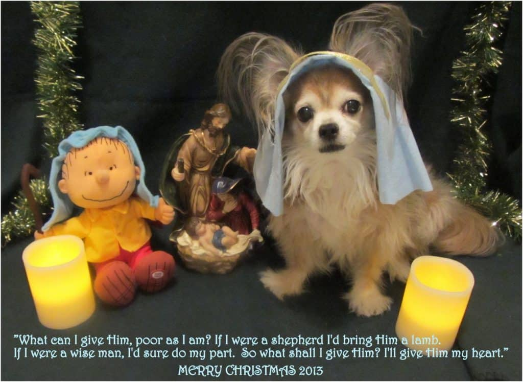 Dog religious theme card
