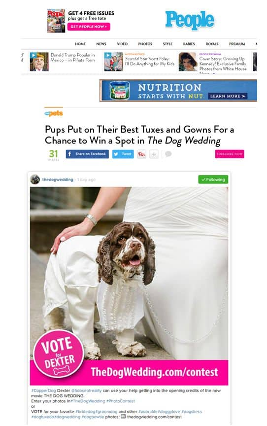 Dexter wins in Dog Wedding