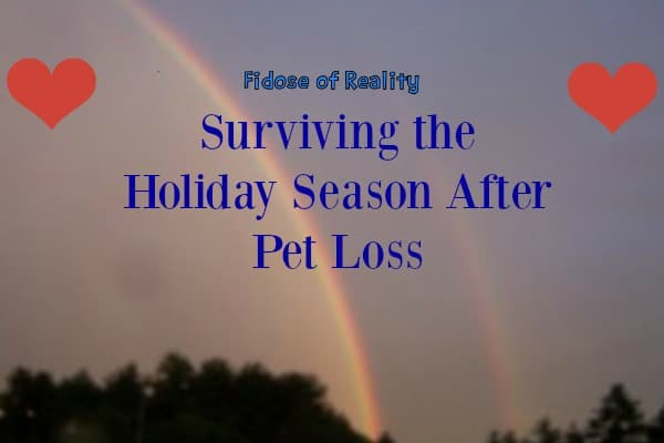Surviving pet loss