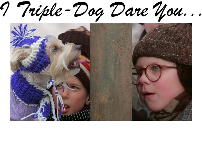 A Christmas Story for dog lovers