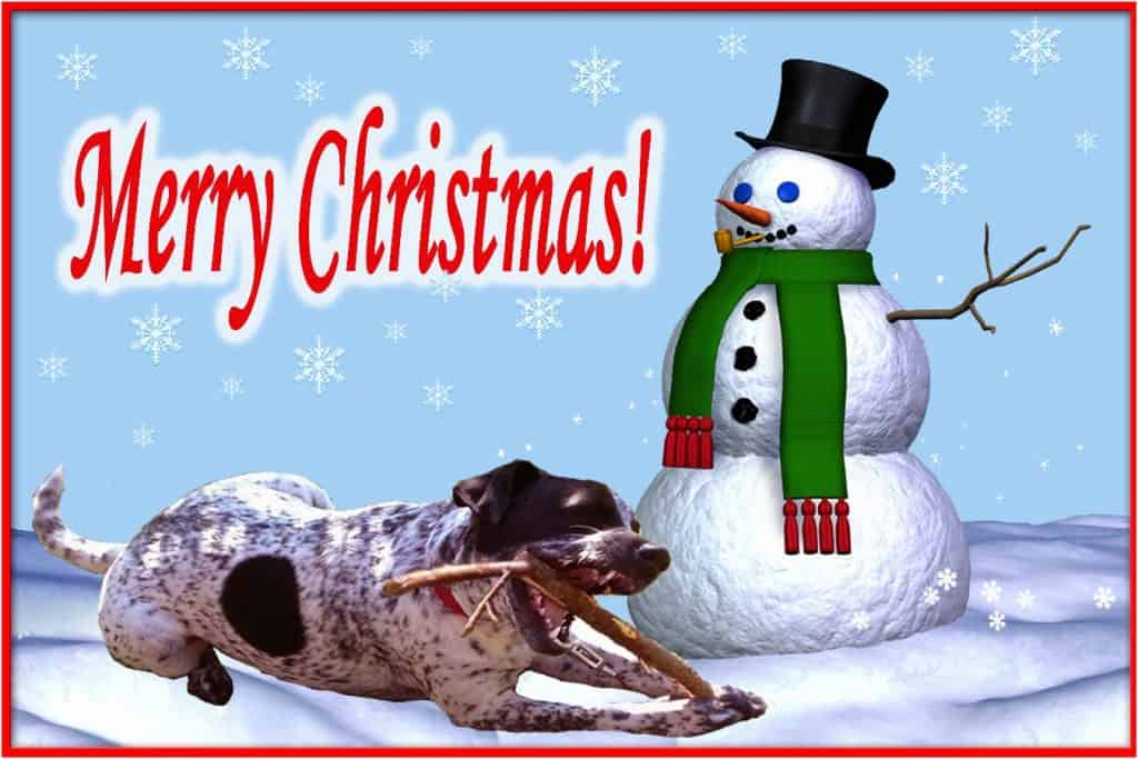 Holiday card for dog lovers
