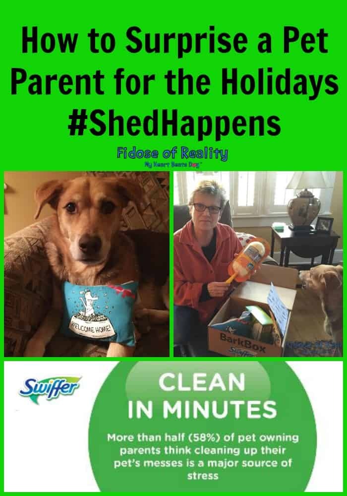 Swiffer helps pet parents clean up #ShedHappens #ad