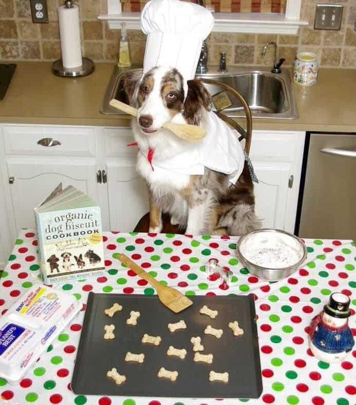 Dog baking Christmas cookies