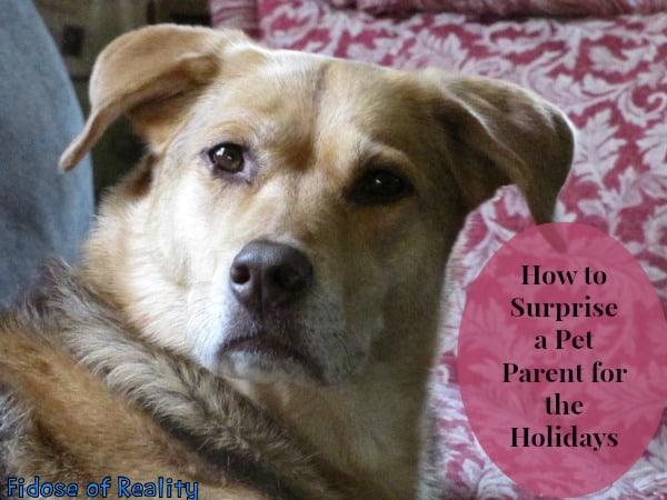 Surprise a pet parent with a Swiffer