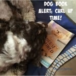 Dog Lovers Book Delivers a Heartwarming Tale and Contest