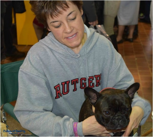French Bulldog Westminster