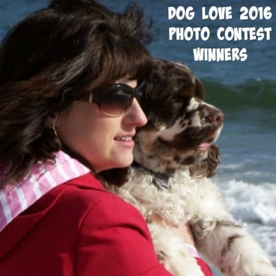 Dog Love Photo Contest Winners 2016