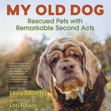 My Old Dog Book Review and Giveaway