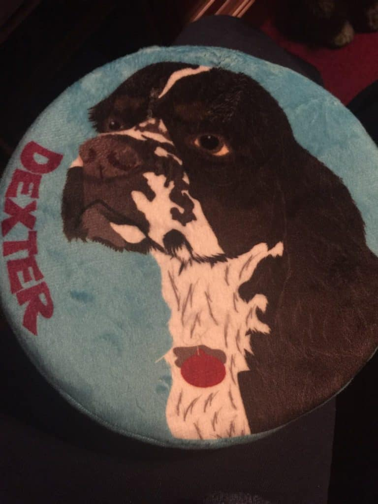 Dexter customized Frisbee PrideBites