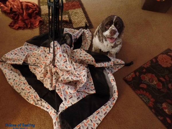 Dog tent from PLAY